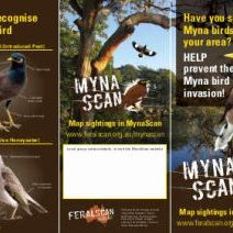 MynaScan Flyer - Lowres March 21