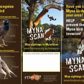 MynaScan Flyer - Lowres March 21